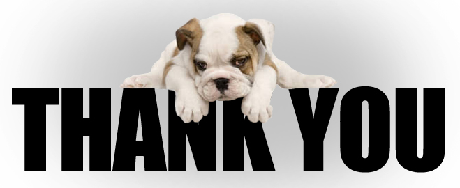 http://www.northernlightshumanesociety.ca/wp-content/uploads/2012/11/Thank-You-Dog.jpg